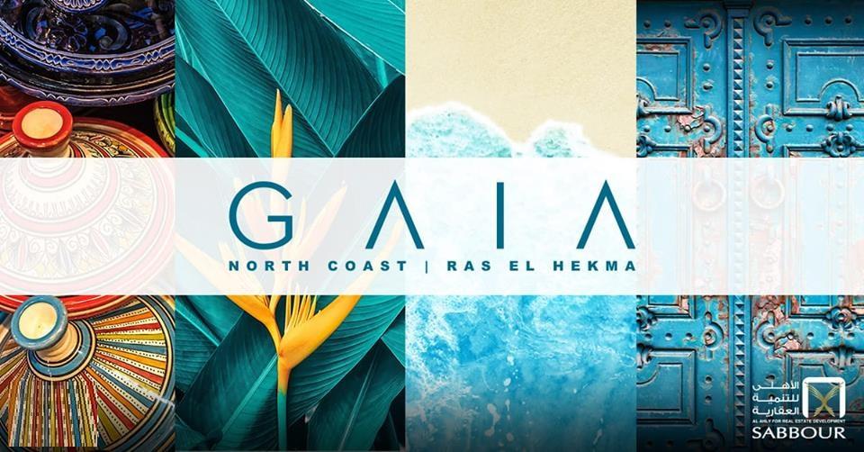 جايا الساحل الشمالى Gaia North Coast